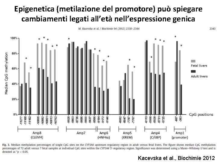 Epigenetica (metilazione del promotore) può spiegare cambiamenti legati all'età nell'espressione genica Kacevska et al.