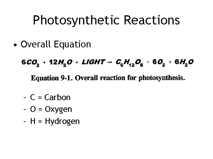 Photosynthetic Reactions • Overall Equation – C = Carbon – O = Oxygen –