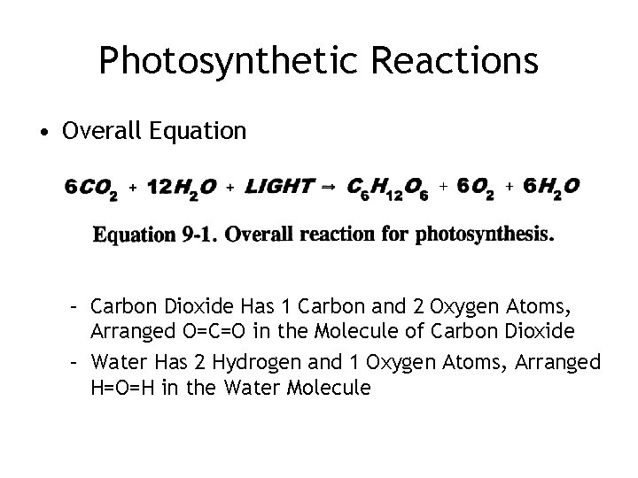 Photosynthetic Reactions • Overall Equation – Carbon Dioxide Has 1 Carbon and 2 Oxygen