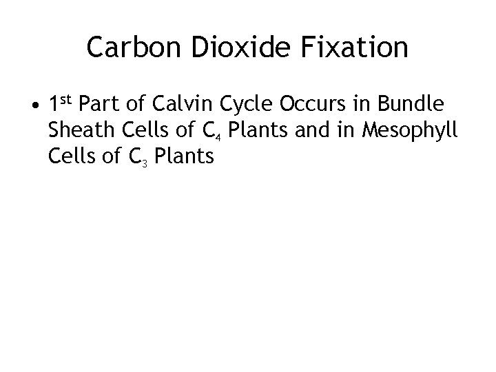 Carbon Dioxide Fixation • 1 st Part of Calvin Cycle Occurs in Bundle Sheath
