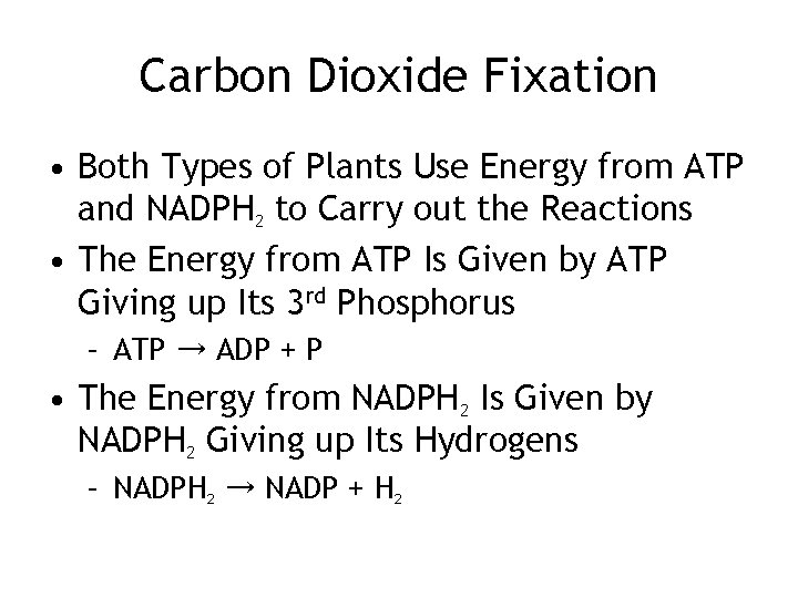 Carbon Dioxide Fixation • Both Types of Plants Use Energy from ATP and NADPH