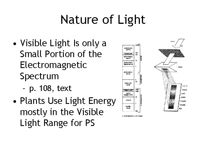 Nature of Light • Visible Light Is only a Small Portion of the Electromagnetic