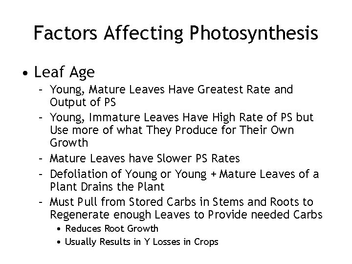 Factors Affecting Photosynthesis • Leaf Age – Young, Mature Leaves Have Greatest Rate and