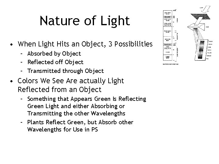 Nature of Light • When Light Hits an Object, 3 Possibilities – Absorbed by