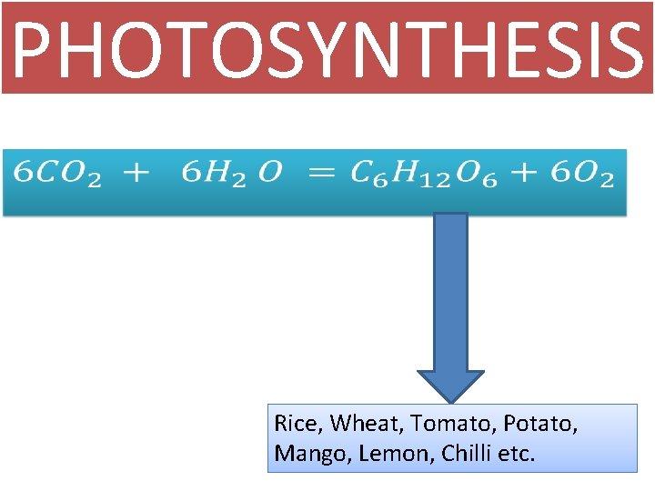 PHOTOSYNTHESIS • Rice, Wheat, Tomato, Potato, Mango, Lemon, Chilli etc.
