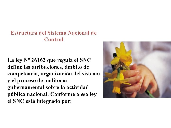 Estructura del Sistema Nacional de Control La ley Nº 26162 que regula el SNC