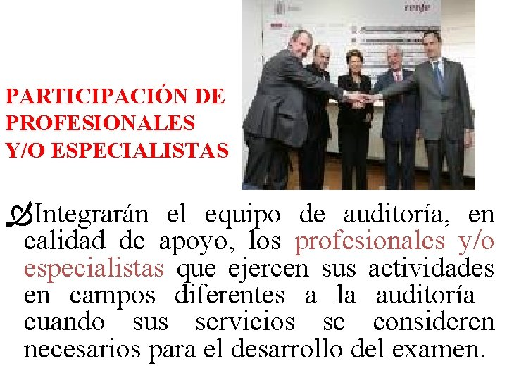 PARTICIPACIÓN DE PROFESIONALES Y/O ESPECIALISTAS Integrarán el equipo de auditoría, en calidad de apoyo,
