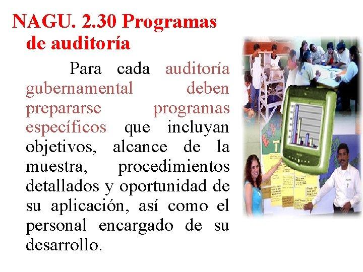 NAGU. 2. 30 Programas de auditoría Para cada auditoría gubernamental deben prepararse programas específicos