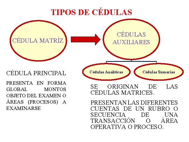 TIPOS DE CÉDULAS CÉDULA MATRÍZ CÉDULA PRINCIPAL PRESENTA EN FORMA GLOBAL MONTOS OBJETO DEL