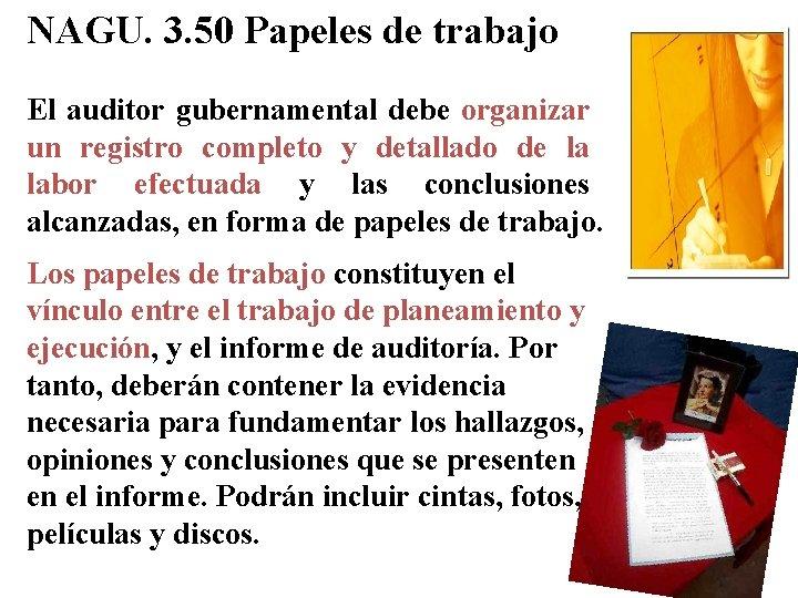 NAGU. 3. 50 Papeles de trabajo El auditor gubernamental debe organizar un registro completo