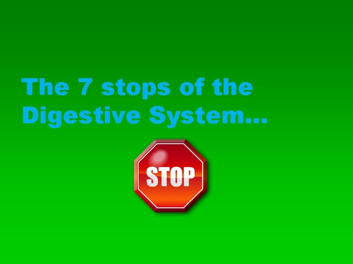 The 7 stops of the Digestive System…