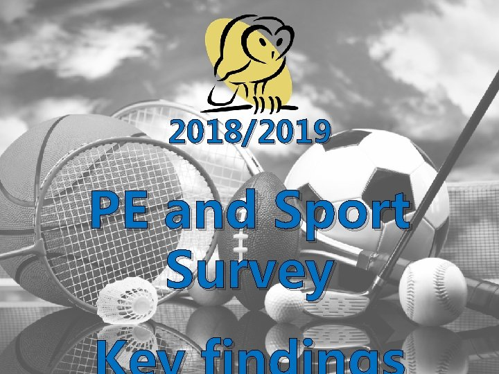2018/2019 PE and Sport Survey
