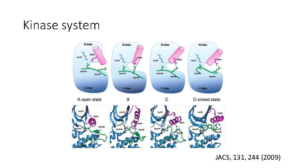 Kinase system JACS, 131, 244 (2009)