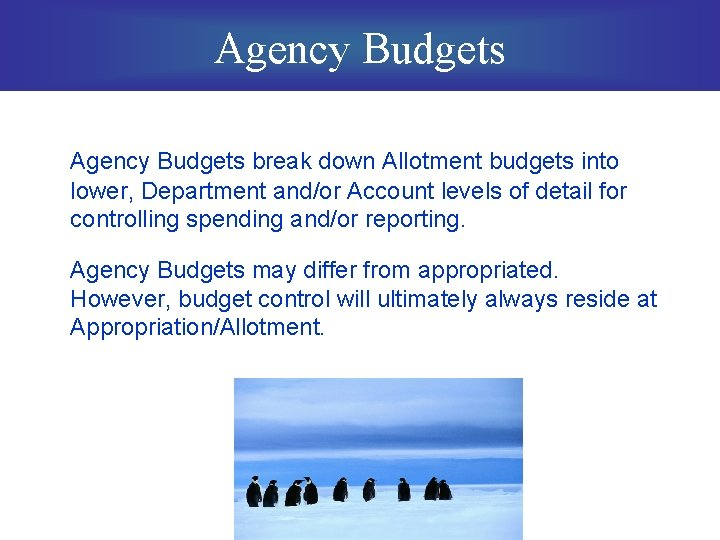 Agency Budgets break down Allotment budgets into lower, Department and/or Account levels of detail