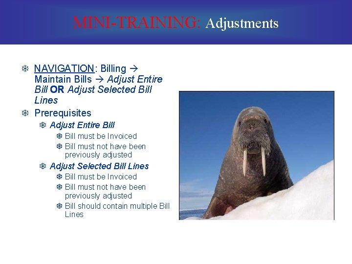 MINI-TRAINING: Adjustments T NAVIGATION: Billing Maintain Bills Adjust Entire Bill OR Adjust Selected Bill