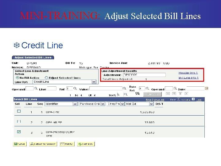MINI-TRAINING: Adjust Selected Bill Lines T Credit Line