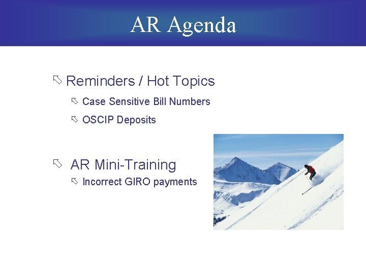 AR Agenda õ Reminders / Hot Topics õ Case Sensitive Bill Numbers õ OSCIP