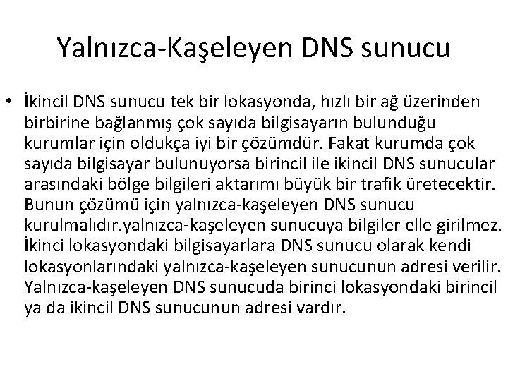 Yalnızca-Kaşeleyen DNS sunucu • İkincil DNS sunucu tek bir lokasyonda, hızlı bir ağ üzerinden