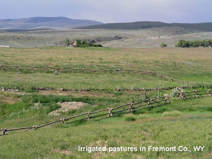 Irrigated pastures in Fremont Co. , WY