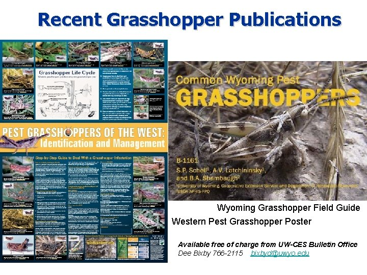 Recent Grasshopper Publications Wyoming Grasshopper Field Guide Western Pest Grasshopper Poster Available free of