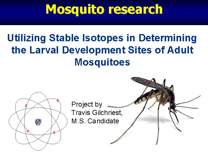 Mosquito research Utilizing Stable Isotopes in Determining the Larval Development Sites of Adult Mosquitoes