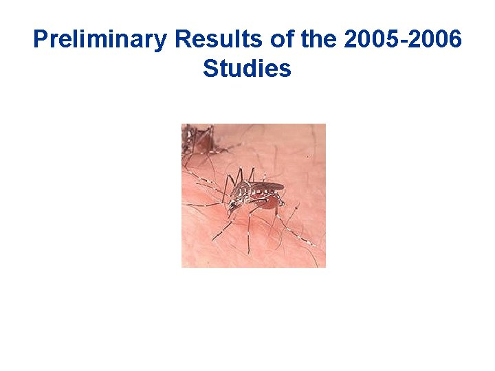 Preliminary Results of the 2005 -2006 Studies