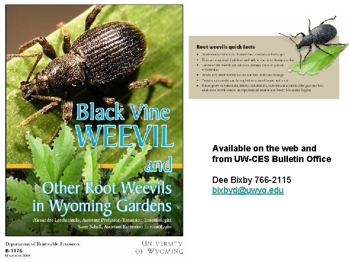 Available on the web and from UW-CES Bulletin Office Dee Bixby 766 -2115 bixbyd@uwyo.