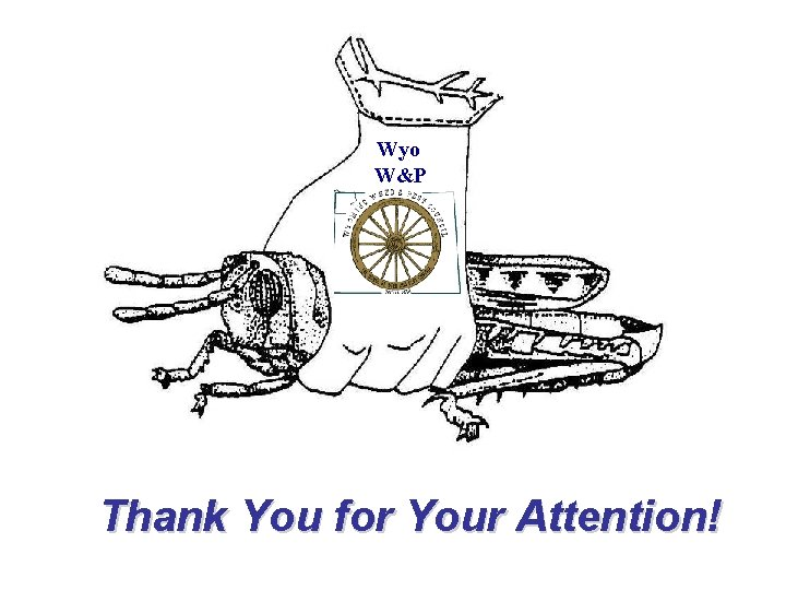 Wyo W&P Thank You for Your Attention!