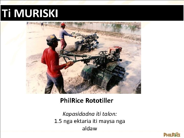 Ti MURISKI Phil. Rice Rototiller Kapasidadna iti talon: 1. 5 nga ektaria iti maysa