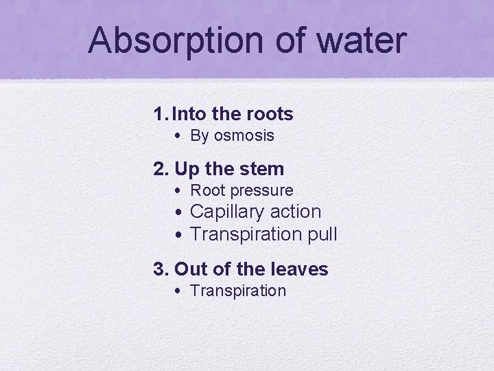 Absorption of water 1. Into the roots • By osmosis 2. Up the stem