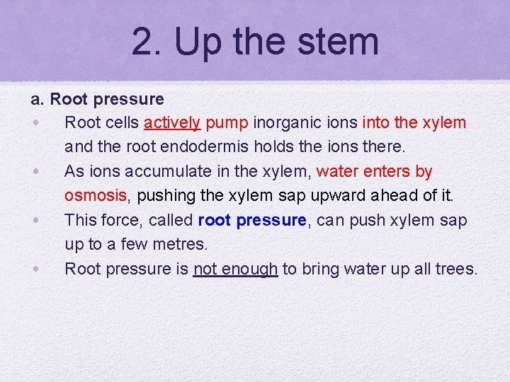 2. Up the stem a. Root pressure • Root cells actively pump inorganic ions