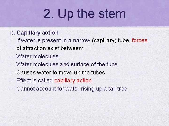 2. Up the stem b. Capillary action - If water is present in a