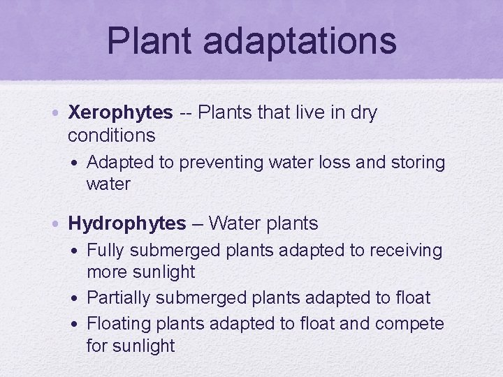 Plant adaptations • Xerophytes -- Plants that live in dry conditions • Adapted to