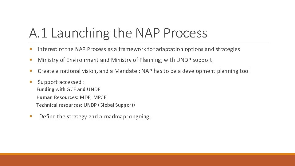 A. 1 Launching the NAP Process § Interest of the NAP Process as a