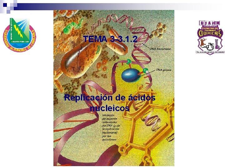TEMA 3 -3. 1. 2 Replicación de ácidos nucleicos