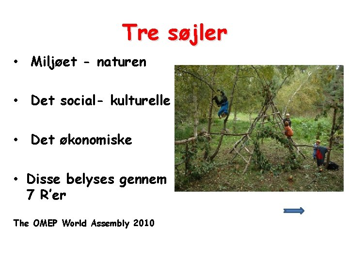 Tre søjler • Miljøet - naturen • Det social- kulturelle • Det økonomiske •
