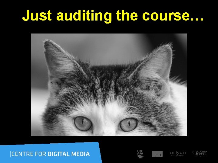 Just auditing the course…