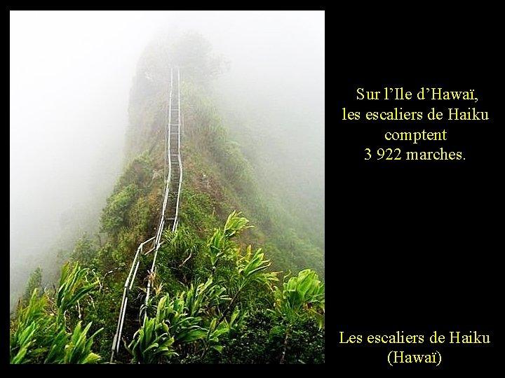 Sur l'Ile d'Hawaï, les escaliers de Haiku comptent 3 922 marches. Les escaliers de