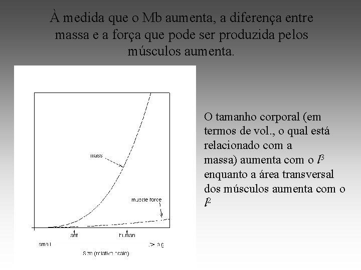À medida que o Mb aumenta, a diferença entre massa e a força que