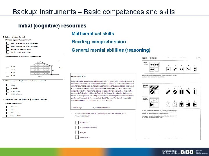 Backup: Instruments – Basic competences and skills Initial (cognitive) resources Mathematical skills Reading comprehension