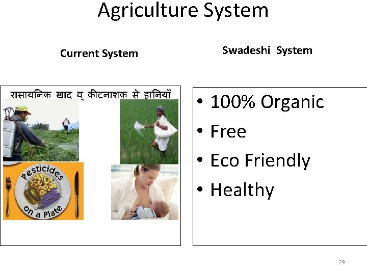 Agriculture System Swadeshi System Current System • • 100% Organic Free Eco Friendly Healthy