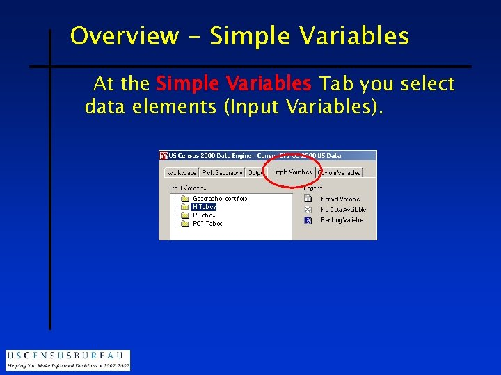 Overview - Simple Variables At the Simple Variables Tab you select data elements (Input