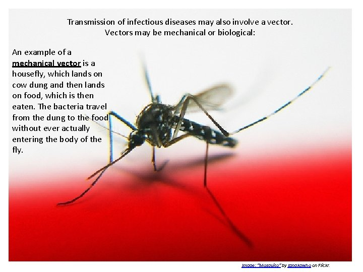about infectious diseases are diseases that are caused  slidetodoc.com