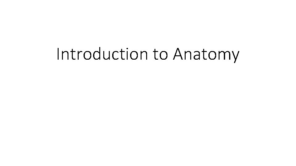 Introduction to Anatomy