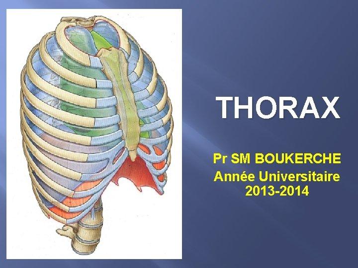 THORAX Pr SM BOUKERCHE Année Universitaire 2013 -2014
