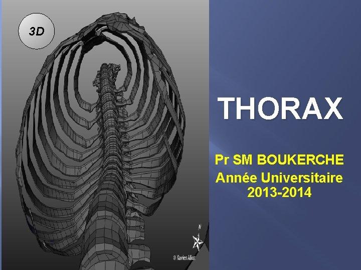3 D THORAX Pr SM BOUKERCHE Année Universitaire 2013 -2014