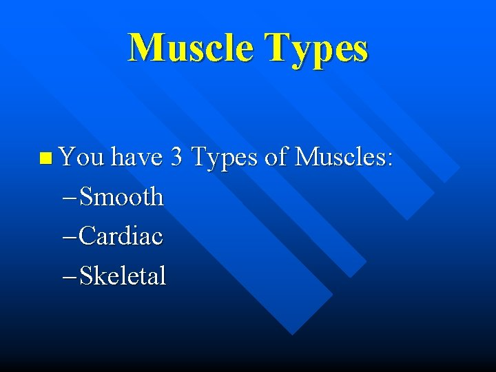 Muscle Types n You have 3 Types of Muscles: – Smooth – Cardiac –
