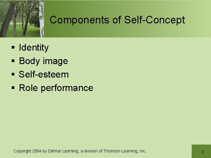 Components of Self-Concept § § Identity Body image Self-esteem Role performance Copyright 2004 by