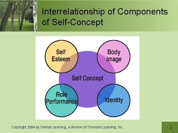 Interrelationship of Components of Self-Concept Copyright 2004 by Delmar Learning, a division of Thomson