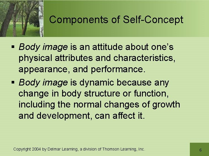 Components of Self-Concept § Body image is an attitude about one's physical attributes and